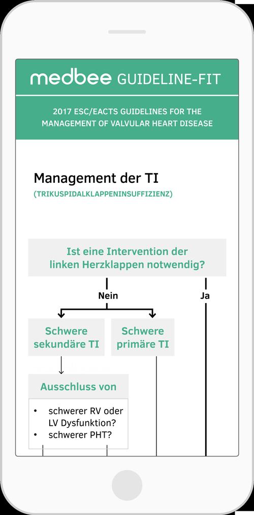 Management der TI